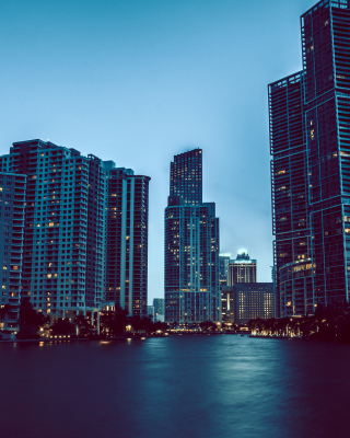 Картинка Miami Night HD Photo на 240x320