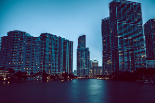 Картинка Miami Night HD Photo на Widescreen Desktop PC 1680x1050