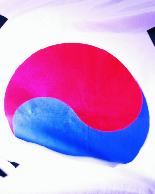 Обои South Korea Flag на 768x1280