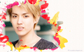 exo - Kris wallpaper