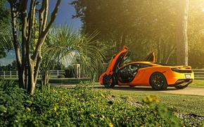 Обои McLaren, ADV.1, MP4-12C, Sun, Orange, Rear, Supercar, Wheels