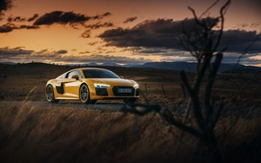 Обои beautiful, V10, car, авто, ауди, небо, wallpaper, Audi