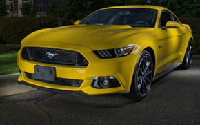 Обои GT 5.0, Mustang, Ford