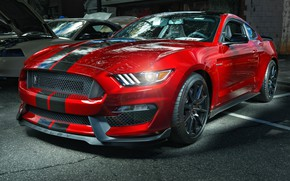Обои Ford, Mustang, GT350, Shelby