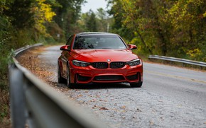 Обои BMW, F80, Road, Forest, Autumn, RED