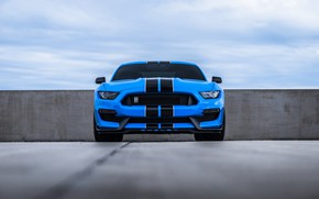 Обои Sight, Mustang, Blue, Ford, Cobra, Front, Face