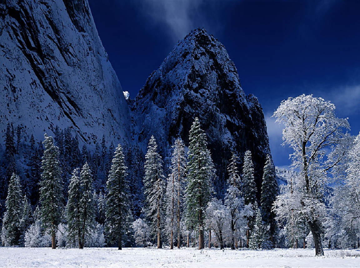 Winter_wallpapers_123