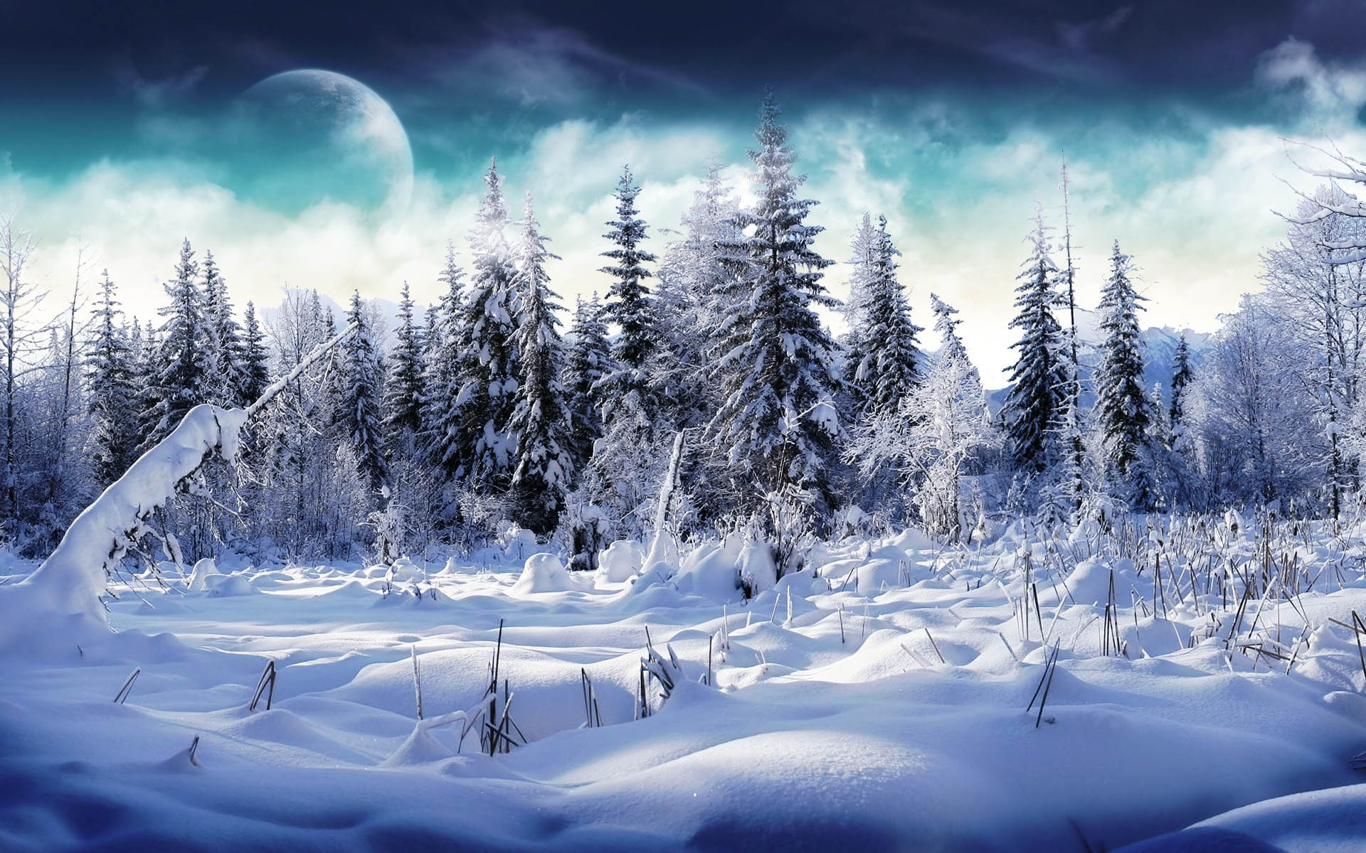 winter-wallpaper-20